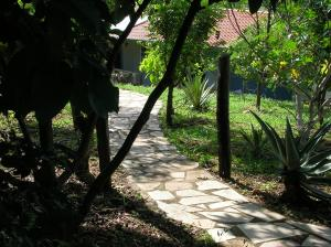 Our Path